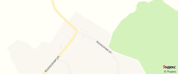 Колхозная улица на карте села Новой Березовки с номерами домов