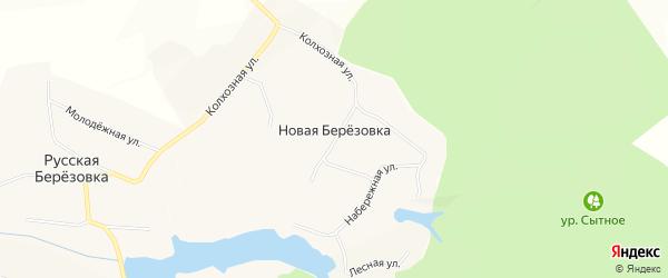 Карта села Новой Березовки в Белгородской области с улицами и номерами домов