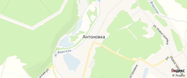 Карта села Антоновки в Белгородской области с улицами и номерами домов