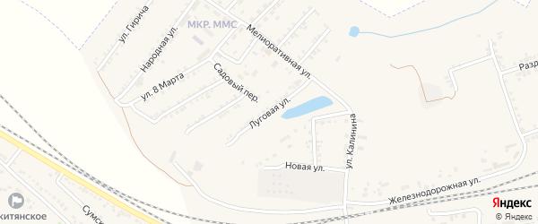 Луговая улица на карте Пролетарского поселка с номерами домов
