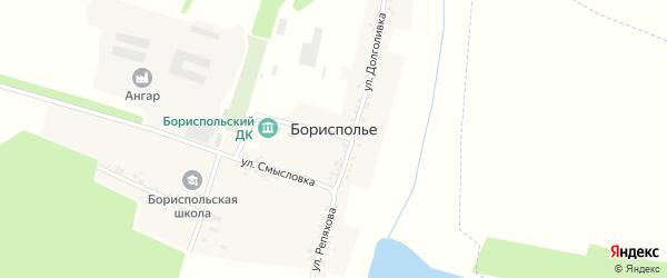 Улица Долголивка на карте села Борисполья с номерами домов