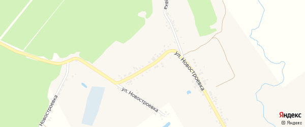Улица Новостроевка на карте села Головчино с номерами домов