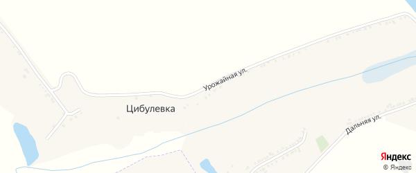 Урожайная улица на карте села Цибулевки с номерами домов