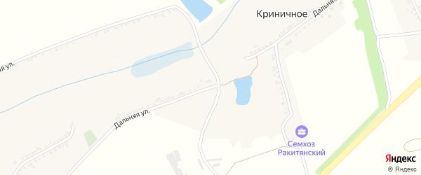 Дальняя улица на карте Криничного села с номерами домов