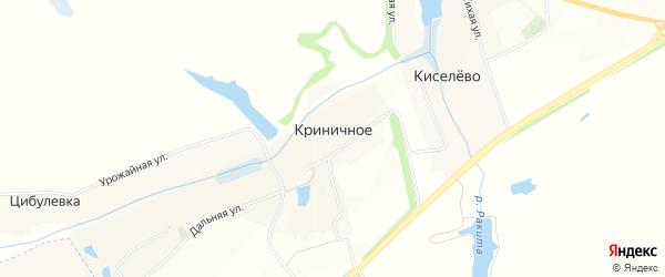 Карта Криничного села в Белгородской области с улицами и номерами домов