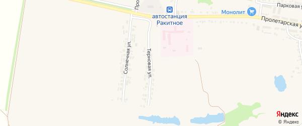 Терновая улица на карте поселка Ракитного с номерами домов