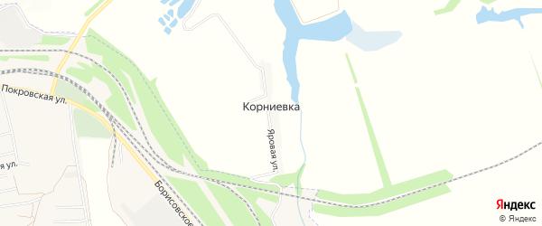 Карта хутора Корниевки в Белгородской области с улицами и номерами домов