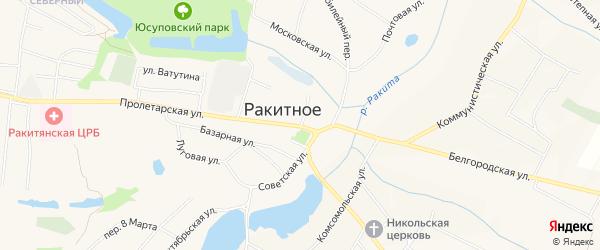 Карта поселка Ракитного в Белгородской области с улицами и номерами домов