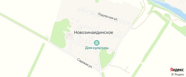 Центральная улица на карте Новозинаидинского села с номерами домов