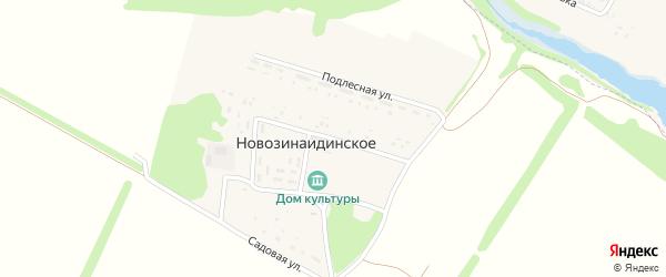 Поселковая улица на карте Новозинаидинского села с номерами домов