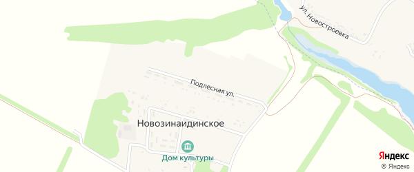 Подлесная улица на карте Новозинаидинского села с номерами домов