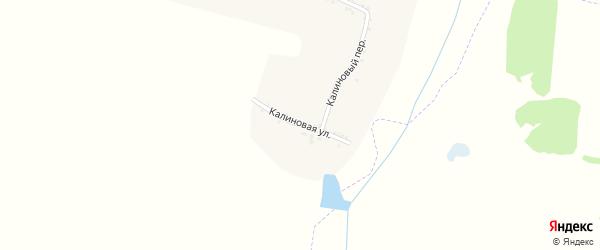 Калиновая улица на карте села Трефиловки с номерами домов