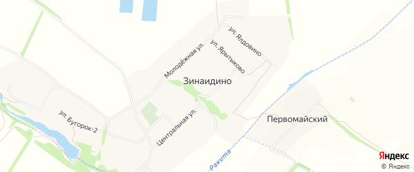 Карта села Зинаидино в Белгородской области с улицами и номерами домов
