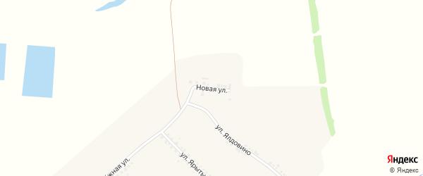 Новая улица на карте села Зинаидино с номерами домов