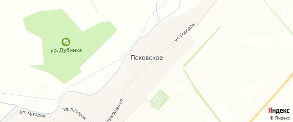 Карта Псковского села в Белгородской области с улицами и номерами домов