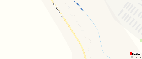 Улица Понизовье на карте Грузского села с номерами домов