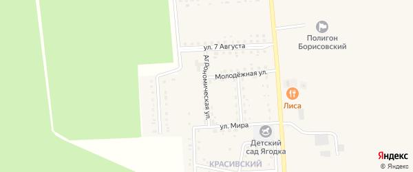 Агрономическая улица на карте поселка Борисовки с номерами домов