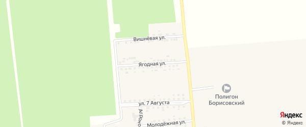 Ягодная улица на карте поселка Борисовки с номерами домов