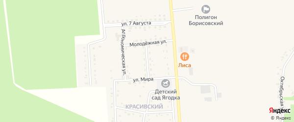 Северная улица на карте поселка Борисовки с номерами домов