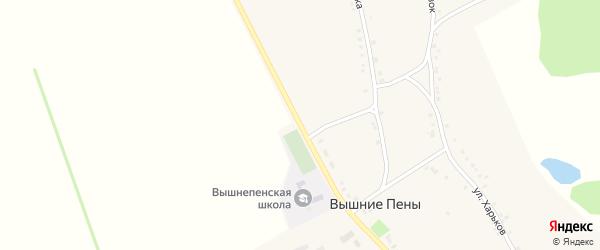 Центральная улица на карте села Вышние Пены с номерами домов