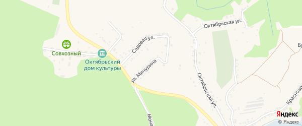 Улица Мичурина на карте поселка Борисовки с номерами домов