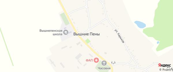 Улица Березник на карте села Вышние Пены с номерами домов