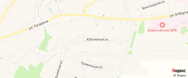 Юбилейная улица на карте поселка Борисовки с номерами домов