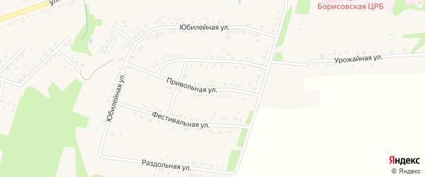Привольная улица на карте поселка Борисовки с номерами домов
