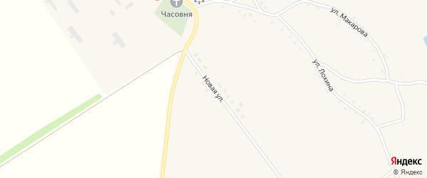 Новая улица на карте села Вышние Пены с номерами домов