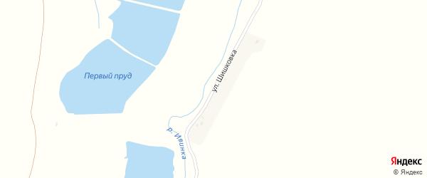 Улица Шишковка на карте села Александровки с номерами домов