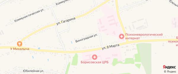 Виноградная улица на карте поселка Борисовки с номерами домов