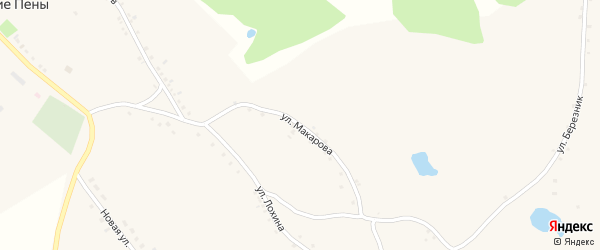 Улица Макарова на карте села Вышние Пены с номерами домов