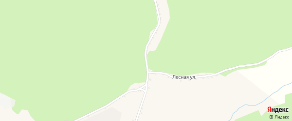 Лесная улица на карте поселка Борисовки с номерами домов