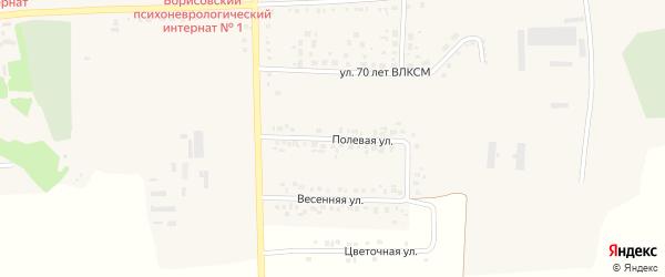Полевая улица на карте поселка Борисовки с номерами домов