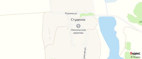 Березовая улица на карте села Студенка с номерами домов