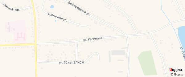 Улица Калинина на карте поселка Борисовки с номерами домов