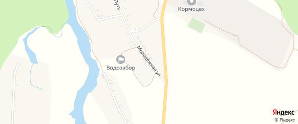 Молодежная улица на карте Богатого села с номерами домов