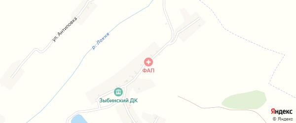 Центральная улица на карте села Зыбино с номерами домов