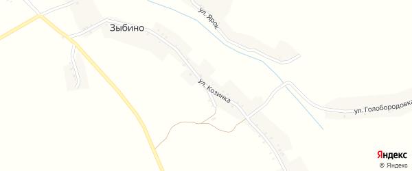 Улица Козинка на карте села Зыбино с номерами домов