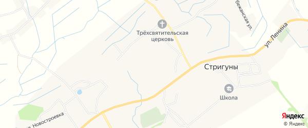 Карта села Стригуны в Белгородской области с улицами и номерами домов