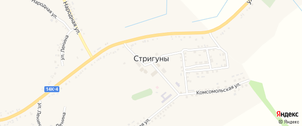 Улица Березовка на карте села Стригуны с номерами домов