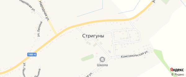 Улица Жихарева на карте села Стригуны с номерами домов