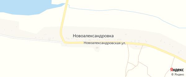 Новоалександровская улица на карте села Новоалександровки с номерами домов