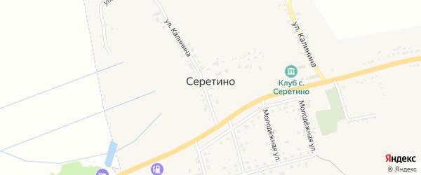 Народная улица на карте села Серетино с номерами домов
