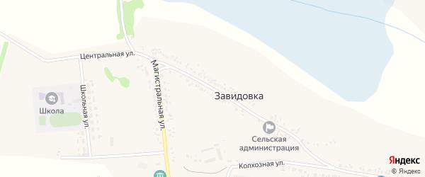 Центральная улица на карте села Завидовки с номерами домов
