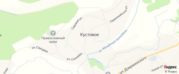 Карта Кустового села в Белгородской области с улицами и номерами домов