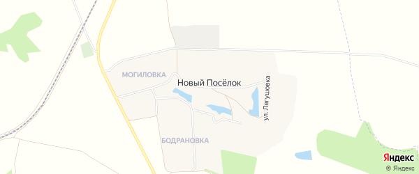 Карта села Нового Поселка в Белгородской области с улицами и номерами домов
