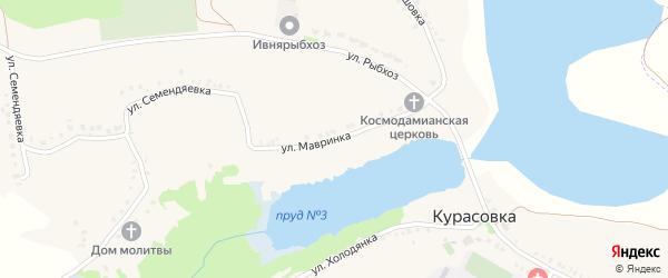 Улица Мавринка на карте села Курасовки с номерами домов
