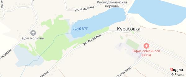 Улица Холодянка на карте села Курасовки с номерами домов