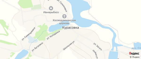 Карта села Курасовки в Белгородской области с улицами и номерами домов